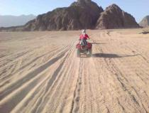 safari excursions quad biking from sharm el sheikh
