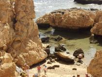 ras mohamed excursion by bus from sharm el sheikh half day trip